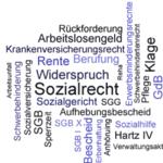 Sozialrecht in Stichworten